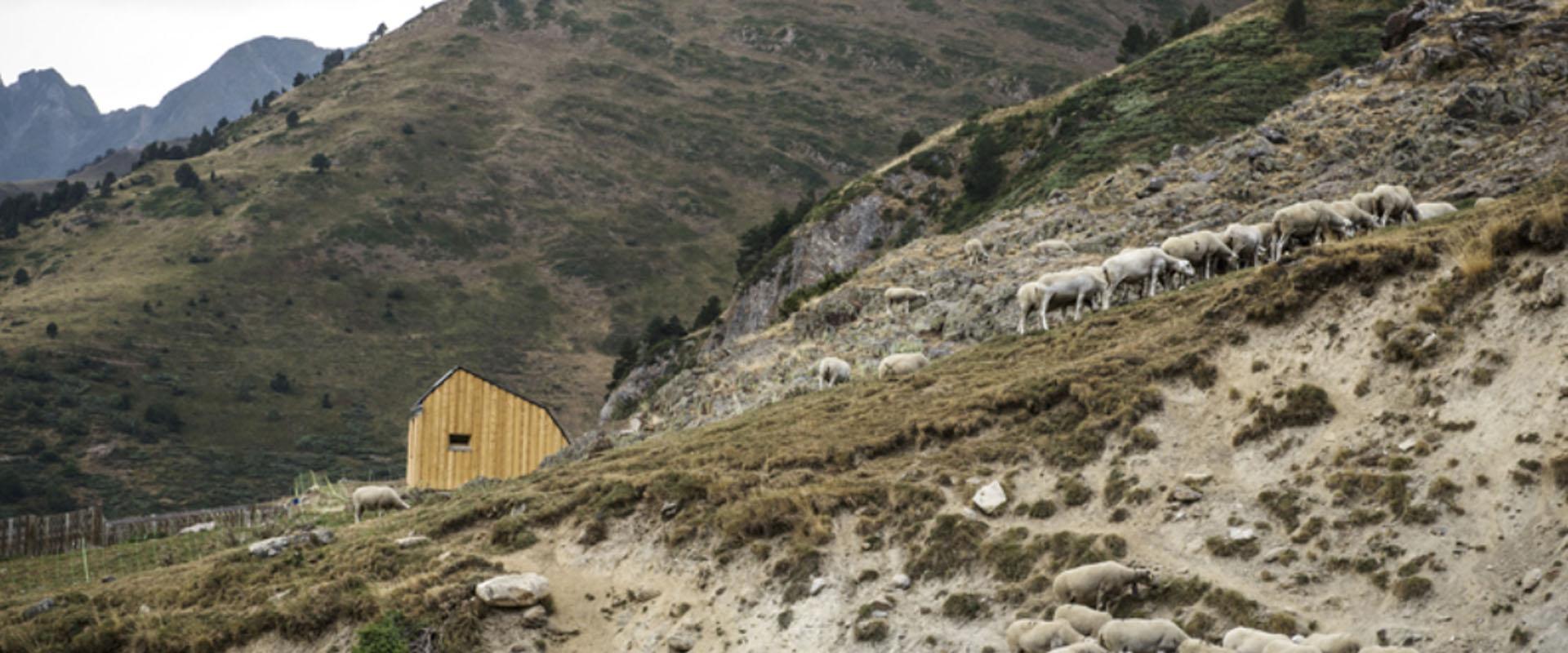 La casa ultraecol gica escondida en los pirineos arquitecturademadera madera y construcci n - Josep bunyesc ...